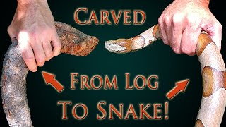 Finding Wood For Carving A Snake Walking Cane