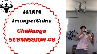 MARIA   TG Challenge Submission #6