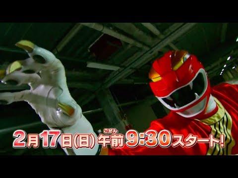 Super Sentai Strongest Battle!! (2019) | Watchrs Club