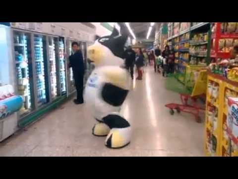 Cow dude dancing in a Mexico supermarket – theferkel
