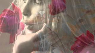 whitout blame - Ismael LO & Marianne Faithfull