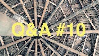[NV#080] Joga, WOŚP i skąd mam pieniądze? (Q&A#10)