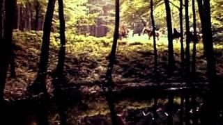 Приключения Квентина Дорварда, стрелка королевской гвардии (1988)
