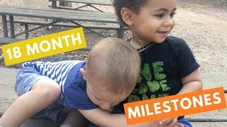 18 Month Developmental Milestones   Baby Developmental Milestones