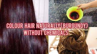 DIY 100% Natural Homemade Hair Colour  With Heena(No Chemicals)| Burgundy Colour| Manisha Pranay