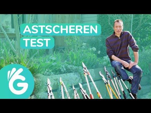 Astschere Test – Fiskars, Gardena und mehr im Vergleich