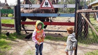 Дети кормят животных . Часть 2. Ашево. Минизоопарк на трассе.
