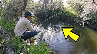 San Diego River Fishing -1VS1- Fly Fisherman VS Ultralight (CHALLENGE!)