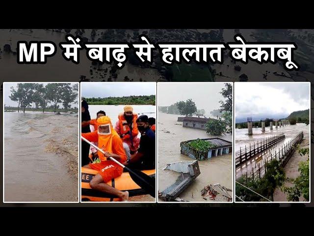 MP में बाढ़ से हाल-बेहाल