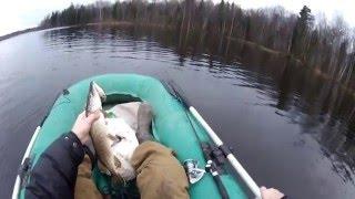 Рыбалка в конце декабря на щуку