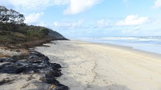 Man killed in shark attack in Qld