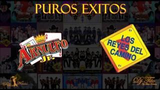 Los Reyes Del Camino y Arnulfo Jr Puros Exitos Mix 2014