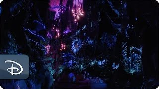 Floating mountains bioluminescent plants and all kinds of immersive adventures await on