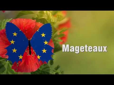 MAGETEAUX : pour une maitrise et une gestion transfrontalière des eaux