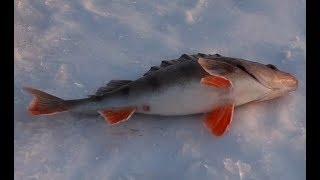 Зимняя рыбалка в татарстане места