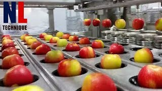 Modern Food Processing Technology with Cool Automatic Machines That Are At Another Level Part 10