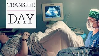 TRANSFER DAY!! | FET Baby #2