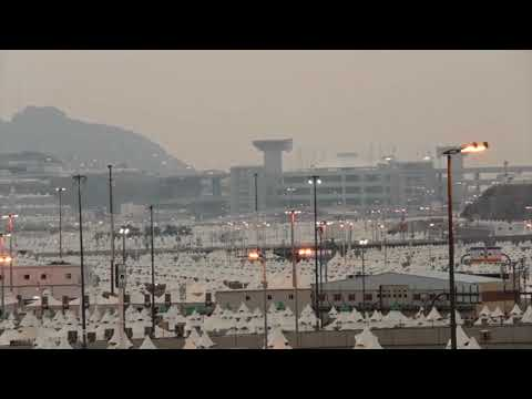 safety regulation in Hajj 23/8/2017
