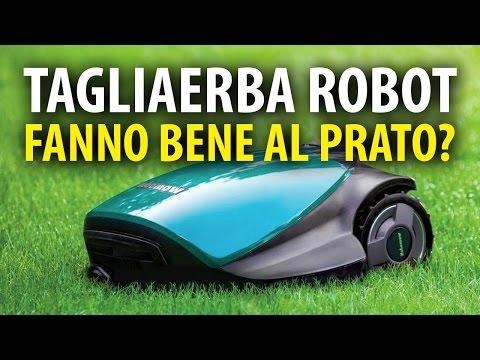 Tagliaerba Robot Fanno Bene al Prato?