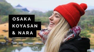 JAPAN Travel Guide: Osaka, Koyasan & Nara   Little Grey Box