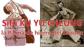 La palma de hierro del Shaolin Kung fu, Sifu Ku Yu Cheung