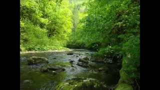 Pêche à La Mouche - La Bienne - Le Chéran - L'Albarine