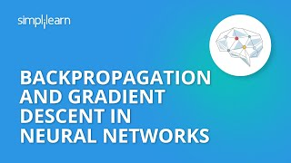Backpropagation And Gradient Descent In Neural Networks | Neural Network Tutorial | Simplilearn