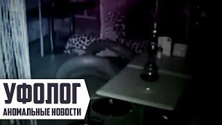 ПРИВИДЕНИЕ УСТРОИЛО ПОГРОМ в московском кафе / УЖАС