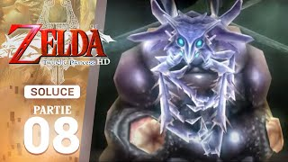 Soluce Twilight Princess HD : 08