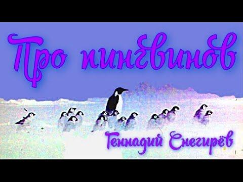 Про пингвинов Геннадий Снегирёв