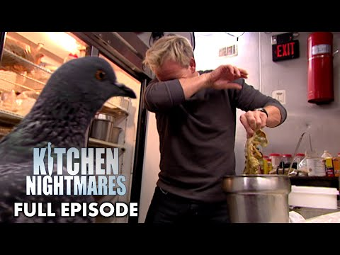 The Infamous Moment Gordon Ramsay Finds A Pigeon In The Kitchen | Kitchen Nightmares