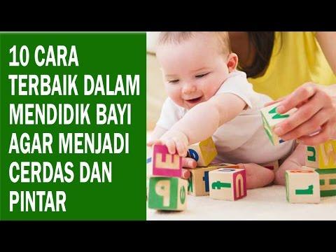 Video 10 Cara Terbaik dalam Mendidik Bayi Agar Menjadi Cerdas dan Pintar