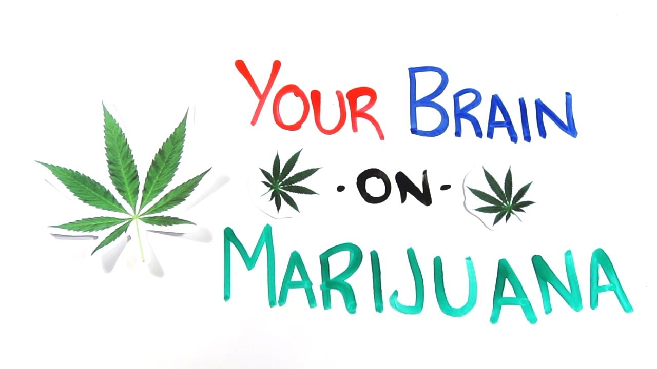 What Your Brain Looks Like When You Smoke Marijuana