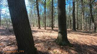 The Woods FPV