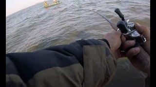 Как и что ловить в калининградском заливе