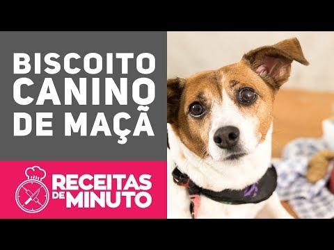 Biscoito canino de Maçã
