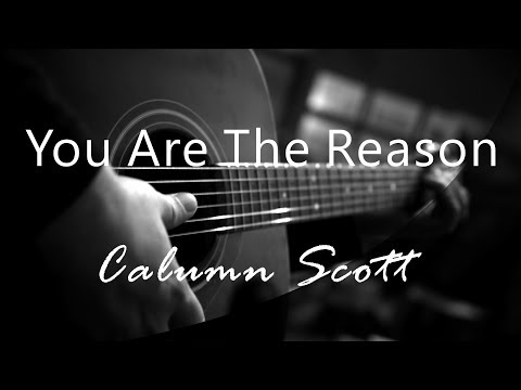 You Are The Reason - Calum Scott ( Acoustic Karaoke )