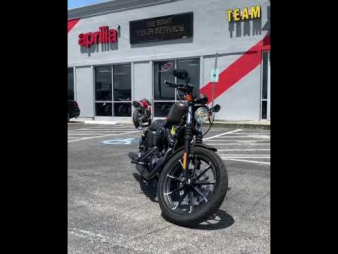 2019 Harley-Davidson Iron 883™ in Houston, Texas - Video 1