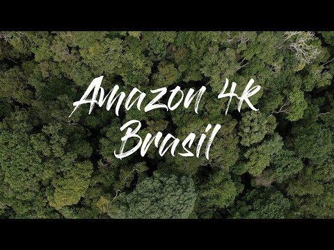 Amazônia: Imagens impressionantes da nossa maior riqueza