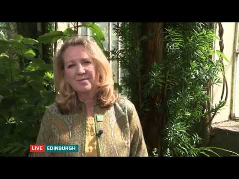 Shireen Chambers on ITV Lunchtime News talks about deforestation