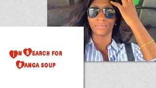 preview picture of video 'SEARCH FOR BANGA SOUP |VLOG |diamondomon'