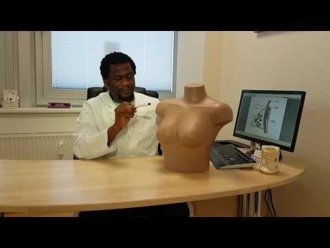 Warum Rückenschmerzen während der Ejakulation