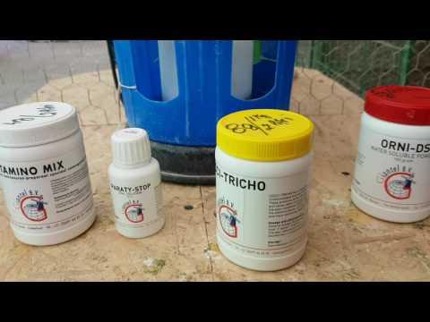 Detoxifierea organismului natural