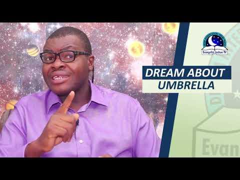 BIBLICAL MEANING OF UMBRELLA IN DREAM - Evangelist Joshua Orekhie