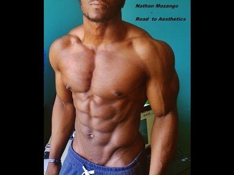 Les muscles dans la planchette