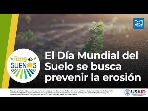 El Día Mundial del Suelo se busca prevenir la erosión