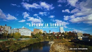 AUTUMN IN SENDAI