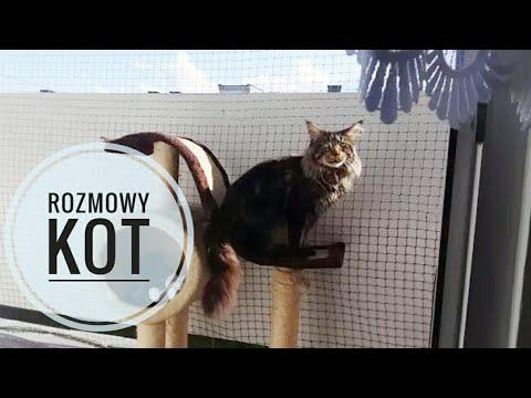 Krasnodar kości stopy