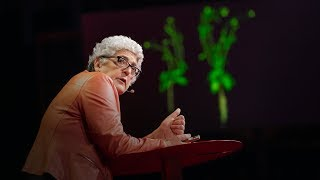 How supercharged plants could slow climate change | Joanne Chory