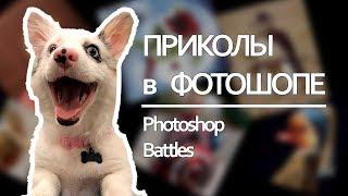 Приколы в фотошопе   Photoshop Battles